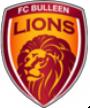 Bulleen Lions