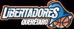 Libertadores de Querétaro