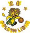 Shenyang Golden Lions