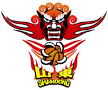 Shandong Lions