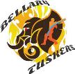 Bellary Tuskers
