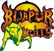 Bijapur Bulls