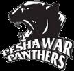 Peshawar Panthers