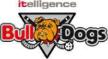 Itelligence Bulldogs Brno