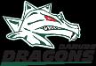 Danube Dragons