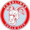 Salines Tuzla City
