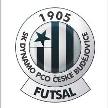 Dynamo České Budějovice Futsal