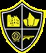 Belfast United Futsal Club