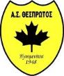 Thesprotos FC