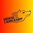 Budai Farkasok KKUK