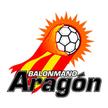 CAI BM Aragón