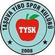 Amasya Taşova YİBO