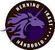 Herning-Ikast Håndbold
