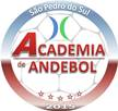 Academia de Andebol de São Pedro do Sul