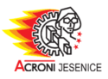 Acroni Jesenice