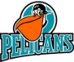 Pelicans hockey
