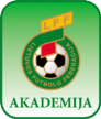 NFA Kaunas