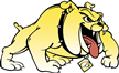 Bowie State Bulldogs basketball