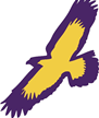 Elmira Soaring Eagles basketball