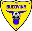 CS Bucovina Rădăuți