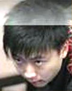 Lu Chenwei