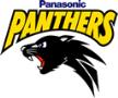 Panasonic Panthers