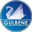 VK Gulbene