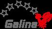 VBC Galina