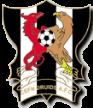 Druids FC
