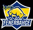 1907 Fenerbahce eSports