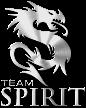 Team Spirit eSports