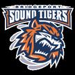 Bridgeport Sound