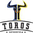 Toros de Herrera