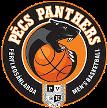 Pecsi VSK Panthers