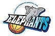 Incheon ET Land Elephants