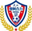Hubei Chufeng Heli