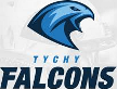 Falcons Tychy