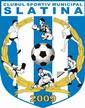 CSM Slatina