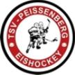 Peißenberg