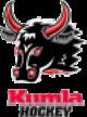 Kumla Black Bulls