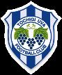 Tochigi City