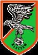 Sokół Kleczew