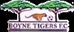 Boyne Tigers