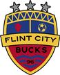 Flint City