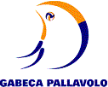 Pallavolo Gabeca Monza