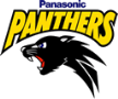 Panasonic Panthers
