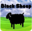 Black Sheep!
